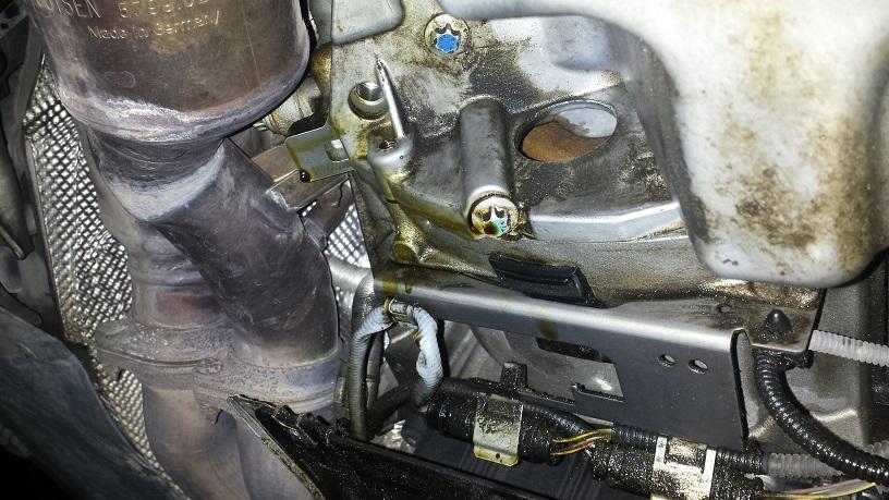 Rear Main Seal Or Oil Pan Gasket Pic