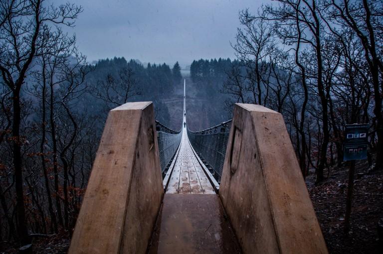 Name:  suspension bridge hängeseilbrücke geierlay  0406-Gemma-Geierlay-Germany's-Longest-Suspension-Bri.jpg Views: 3444 Size:  136.9 KB